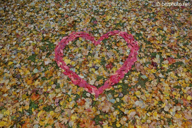 поделки из листьев на тему осень фото