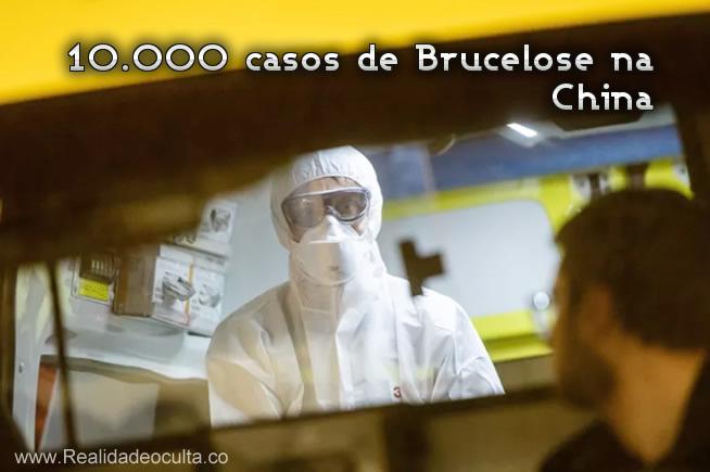 10.500 casos de Brucelose na China