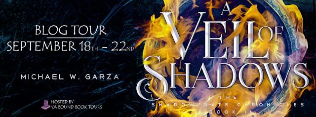 http://yaboundbooktours.blogspot.com/2017/07/blog-tour-sign-up-veil-of-shadows.html
