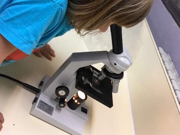 Una reflexión de la ciencia desde infantil en el día internacional de la ciencia.