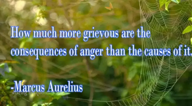 Anger quotes 72