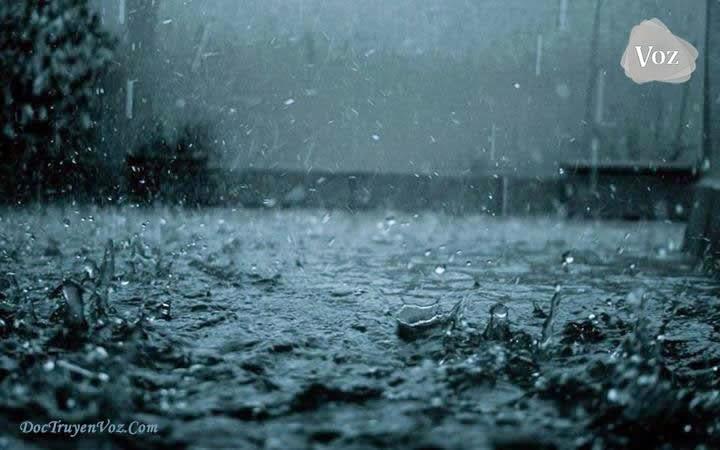[Kể câu chuyện] Đặt tên là: Cơn mưa ngang qua.... 4