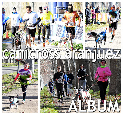 Fotos Canicross Mushing Aranjuez
