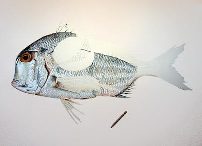 Le dessin du poisson réalisé au 3/4