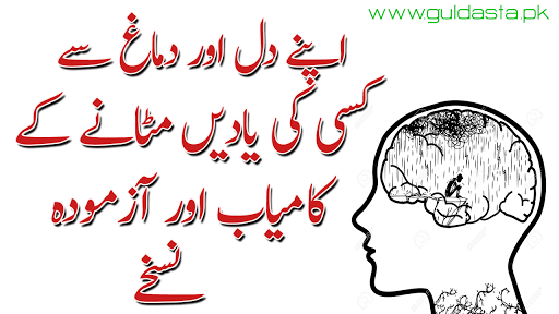 Search Results 3 Ways to Let Go of Painful Memories, Scientists already know, Erasing bad memories, kisi ko bhulane ka wazifa, kisi ko bhool jane ka wazifa, kisi ko bhulane ka tarika, kisi ko dil se nikalne ka wazifa, apne lover ko bhulane ka tarika, kisi ko bhulane ki dua, kisi ko bhulane ka koi tarika, kisi ko bhulane ki tips, The GuruMantra - Vanguard Of Love, improving memory psychology definition memory improvement techniques pdf how to improve memory for studying pdf how are the three stages of memory related to each other long term memory techniques improving memory techniques explain different techniques that may be used to improve memory retentive memory drugs
