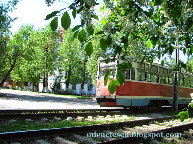Старинный трамвай едет по Томску