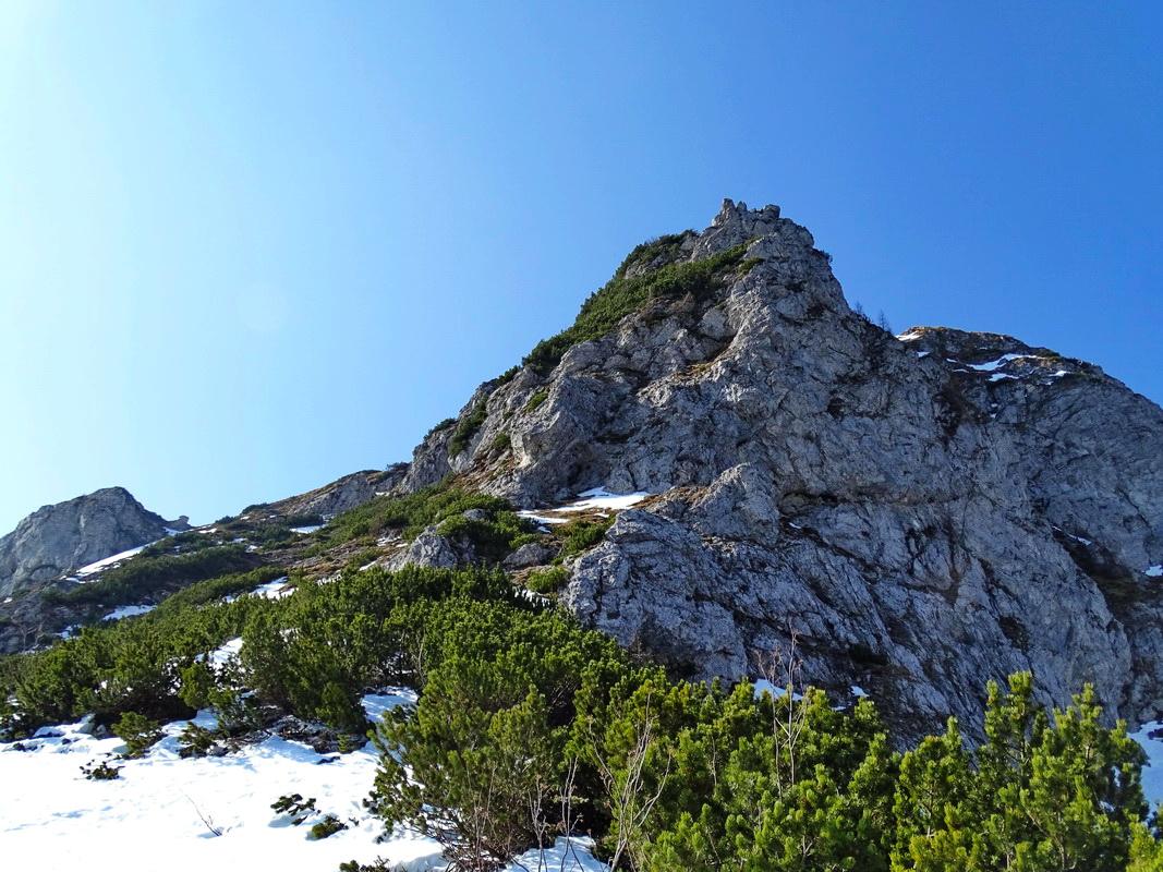 Malfa Forestiero Nomade Monte Schenone da Malga Poccet
