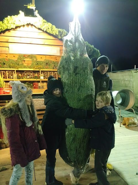 Children hugging a real tree