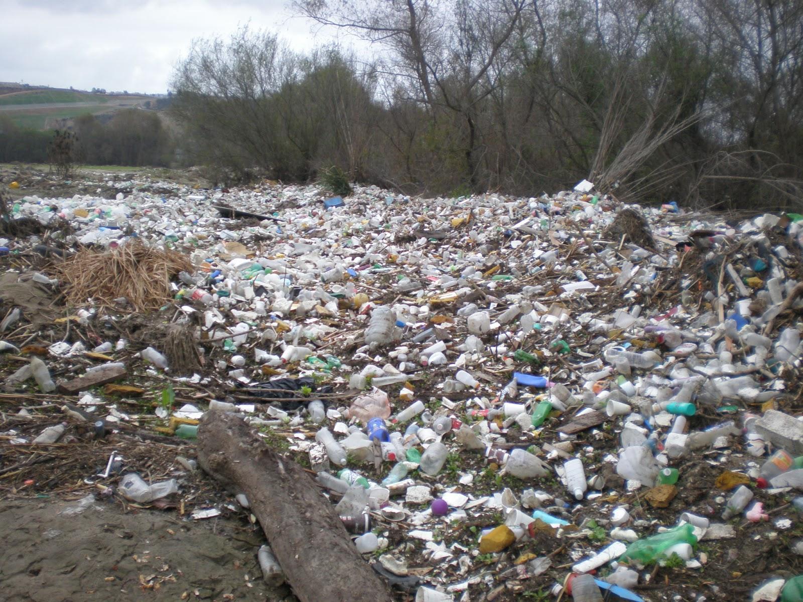 SurfWriter Girls: Plastic Bags Pollute