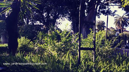 Vegetación en los Jardines de Murillo