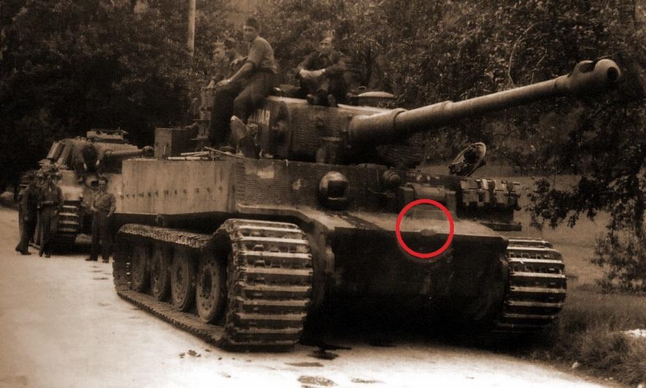 tiger i late images에 대한 이미지 검색결과