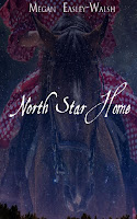 North Star Home, Christian Historical Fiction, Historical Romance, Love Story, Old West, Western Frontier, Award-Winning Writer Megan Easley-Walsh