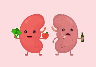 food for healthy kidneys