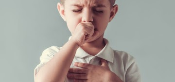 Benefícios das cebolas: remédios e receitas