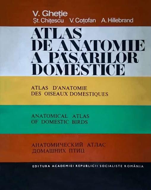 Atlas d'anatomie des animaux domestiques - WWW.VETBOOKSTORE.COM