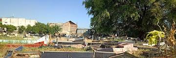 Pemakaman Umum di Jakarta, Tak Sering Dikunjungi Kuburan Bisa Hilang