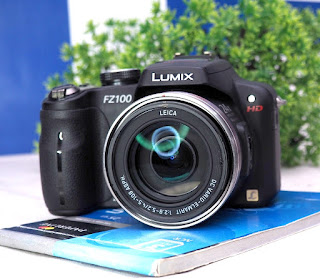 Prosumer Panasonic Lumix FZ100