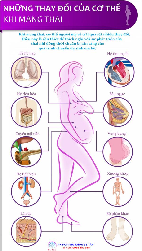 thay đổi khi mang thai1