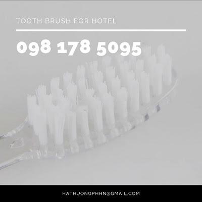 Bộ bàn chải và kem đánh răng 3g dùng một lần chuyên dụng cho khách sạn