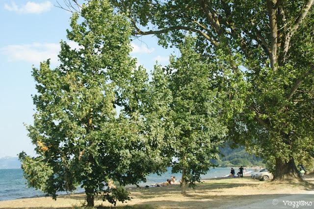 Una delle tante spiagge lungo il Lago di Bolsena