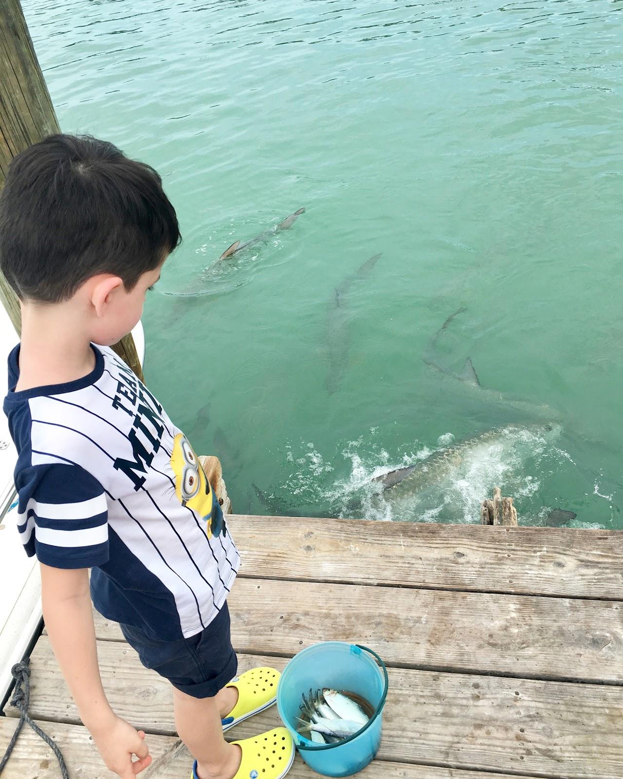 Welcome To Miami Usa Florida Miami Florida Keys Tarpoons