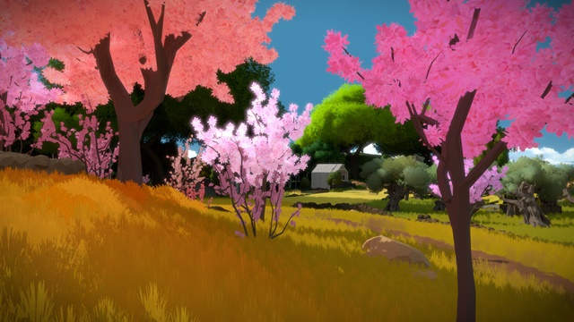 The Witness PC Full Español