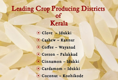 Leading Crop Producing Districts of Kerala
