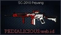 SC-2010 Pejuang