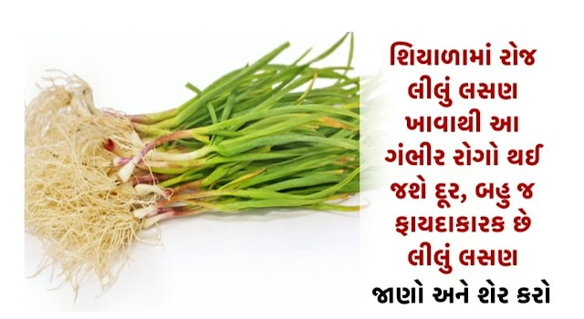 Eating green garlic every day in winter will get rid of these serious diseases