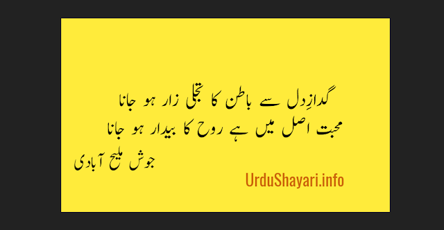 Gadaz e Dil Se Batin Ka Tajali Zar Ho Jana Mohabbat Shayari by Josh malihabadi -2 line love poetry