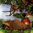 Fonocuento para niños Tatú y su abrigo mágico. Armadillo caminando, con árbol, mono y zorro de fondo