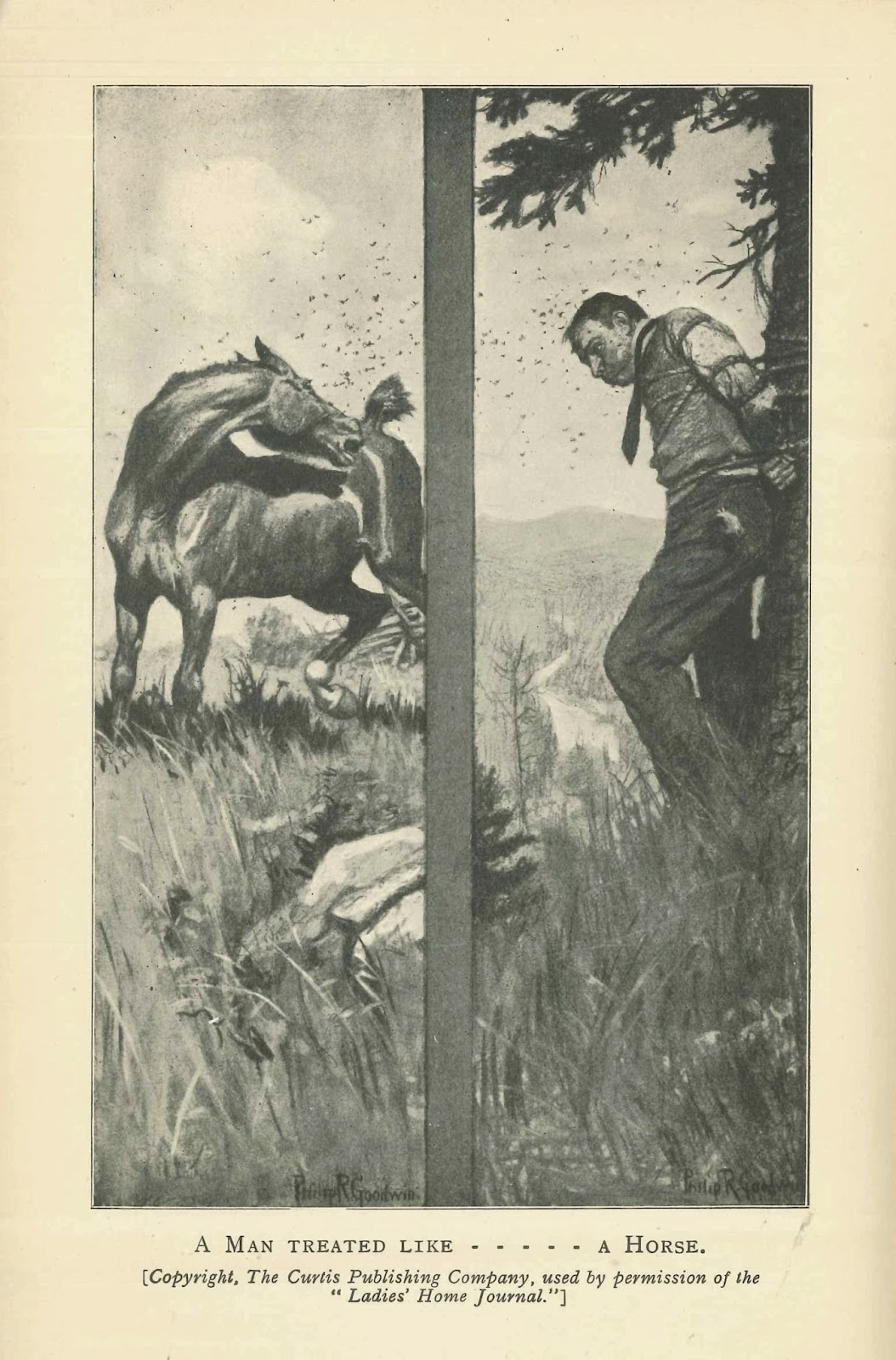 Side-by-side illustrations of a man and horse being harried by insects while physically restrained.