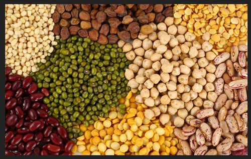 Pulses imports update
