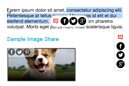 social share buttons on image hover