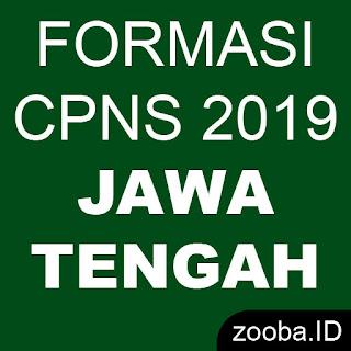 Pengumuman Formasi CPNS 2019 Jawa Tengah
