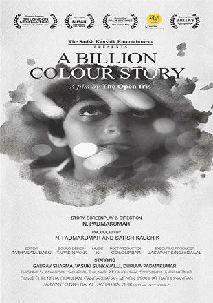 A Billion Colour Story 2016 HDRip 720p Hindi Movie Download
