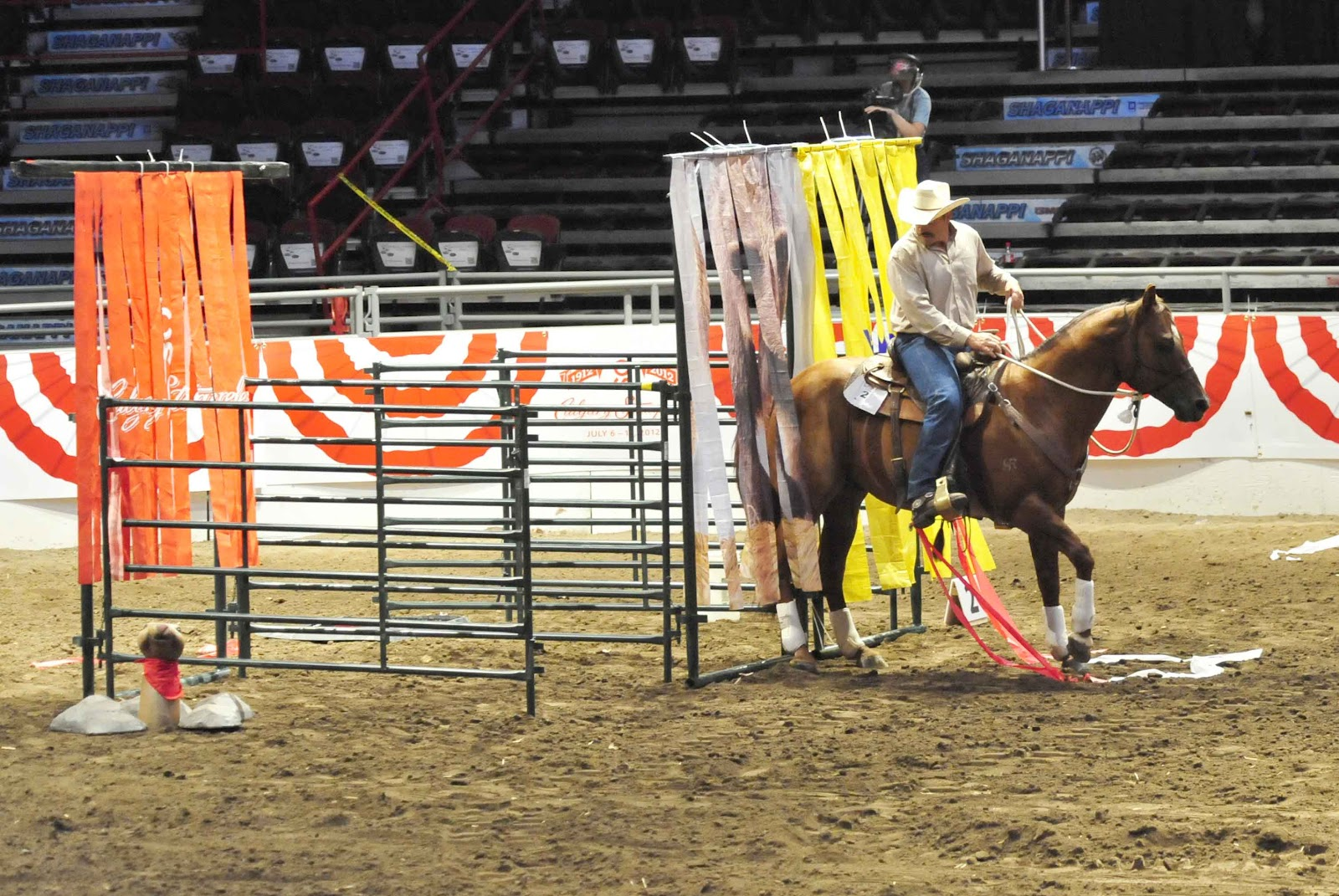 Guymon Grandparents Day Two Calgary Stampede