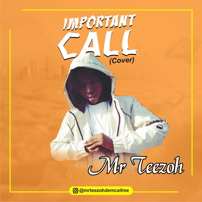 Mr Teezoh - Important call cover