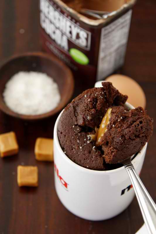 Microwave Chocolate Cake In A Mug Recipe Dishmaps