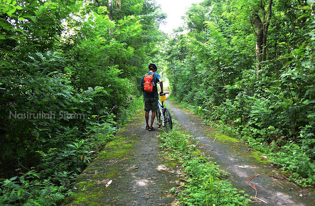 Jalan alternatif menuju Candi Barong