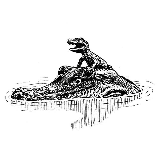 04-Crocodile-Momma-and-Baby-Hat-Tim-Rees-www-designstack-co