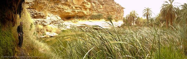 L'acqua cola dalla parete dell'oasi di El Berbara