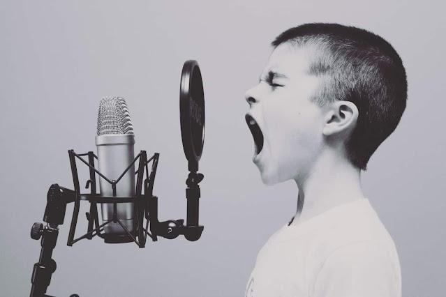 Perangkat Keras Microphone