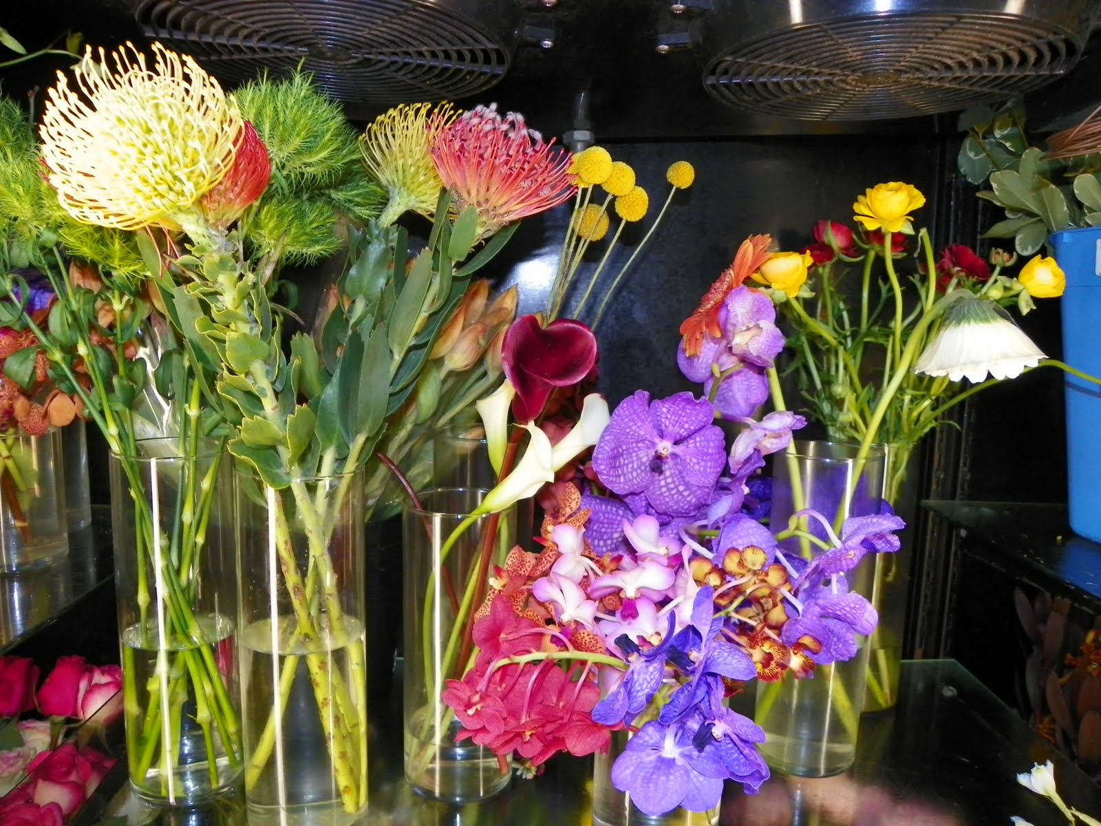Tampa Florist And Unusual Flowers Tampa Apple Blossoms Floral Designs
