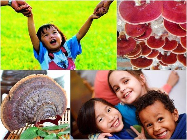 Dùng nấm linh chi cho trẻ em khỏe mạnh và thông minh