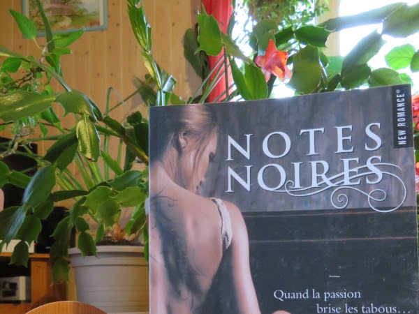 Notes noires de Pam Godwin