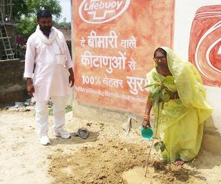 जिले में विश्व पर्यावरण दिवस पर किया गया पौधरोपण  | #NayaSaberaNetwork