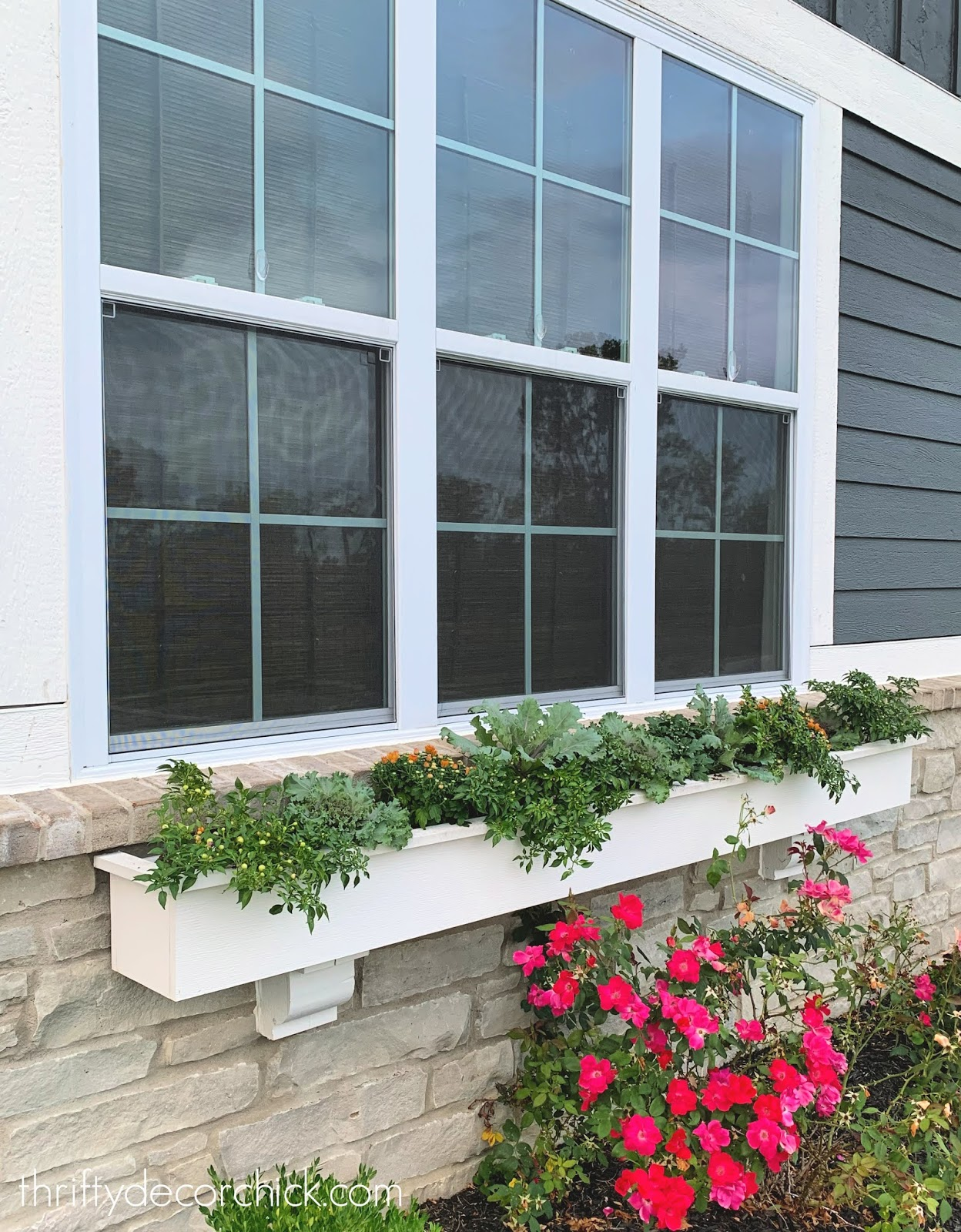 Early fall window box ideas