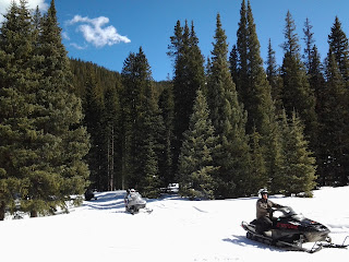 Sunny winter day with 2 snowmobiles riding in the forest along a trail.