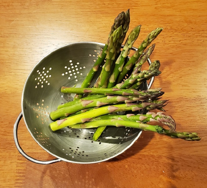 this is a colander full of asparagus spears